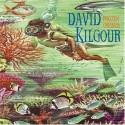 David Kilgour Frozen Orange