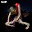 suede-bloodsports