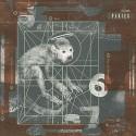 Pixies Doolittle