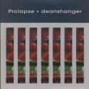 Prolapse Deanshanger