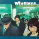 The Whitlams Love This City