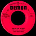 Jody Reynolds Endless Sleep