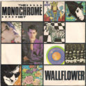 The Monochrome Set Wallflower