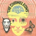 The Chameleons John Peel Sessions