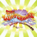 The Waterboys Book Of Lightning
